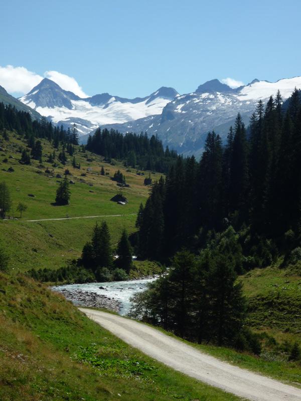 Die Aussicht von der Berndlalm. Der Große Geiger und sein Gletscher.